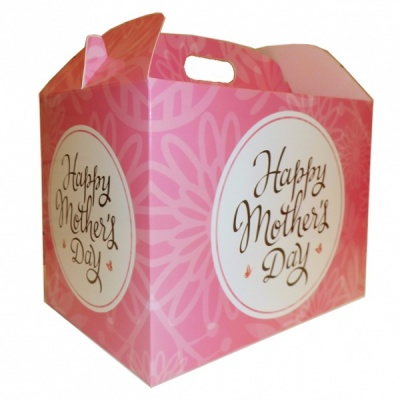 Gable Box - 24x18x16 (pk 10 Large) - MOTHER'S DAY PINK