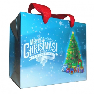 FLAT TOP GIFT BAG (single) - small CHRISTMAS TREES