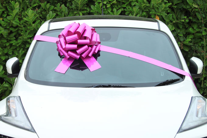 MEGA Giant Car Bow (42cm diameter) with 6m Ribbon - HOLOGRAPHIC PINK