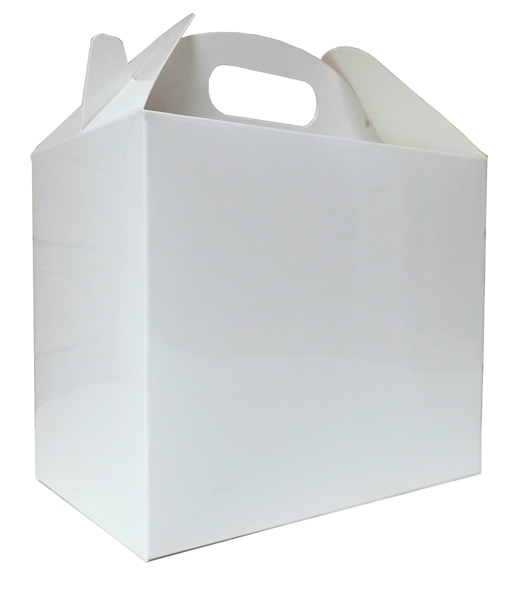 Pack of 10 GABLE BOXES 17x10x14cm - GLOSSY WHITE